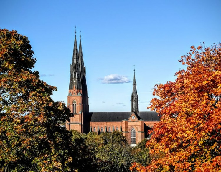 Autumn View Uppsala Cathedral in Sweden